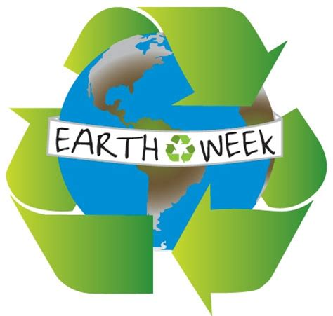 Environment day celebration report writing 2017